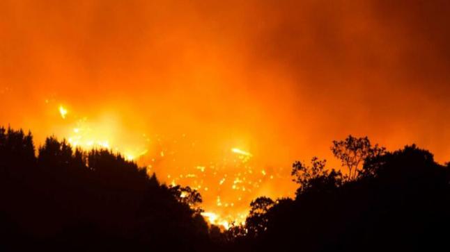 تشتعل النيران فى جنوب اسبانيا لليوم الخامس على التوالى . هناك أكثر من 1600 نازح